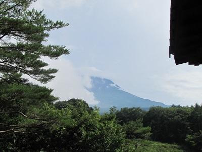 久しぶりに富士山が顔を出しました!