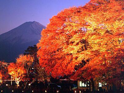 紅葉を満喫!富士山・河口湖・富士五湖の紅葉祭り