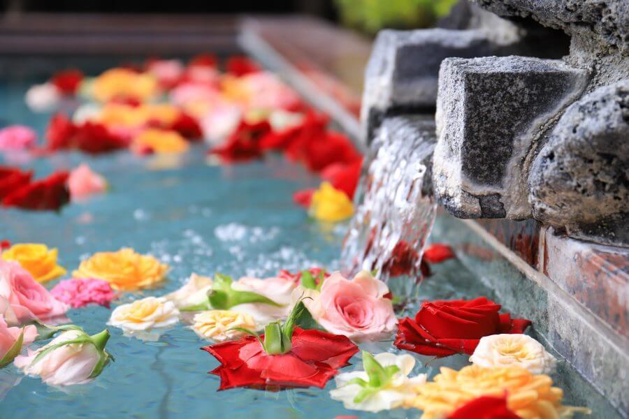 本日、26日(日)はお風呂の日です!